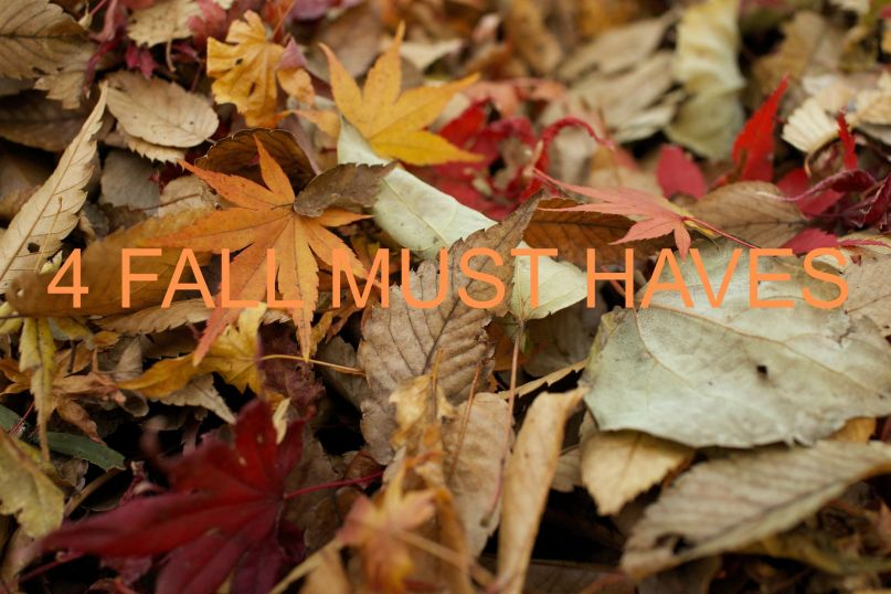 4 fall must haves