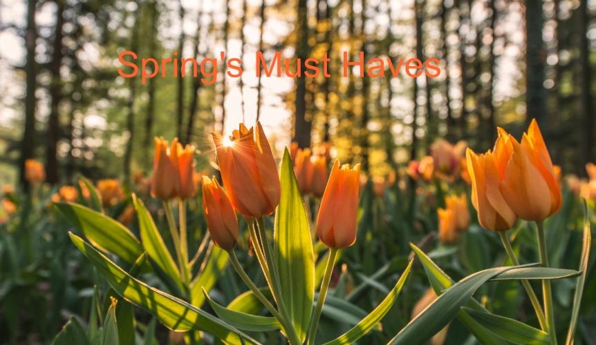 Spring's Must Haves.jpg
